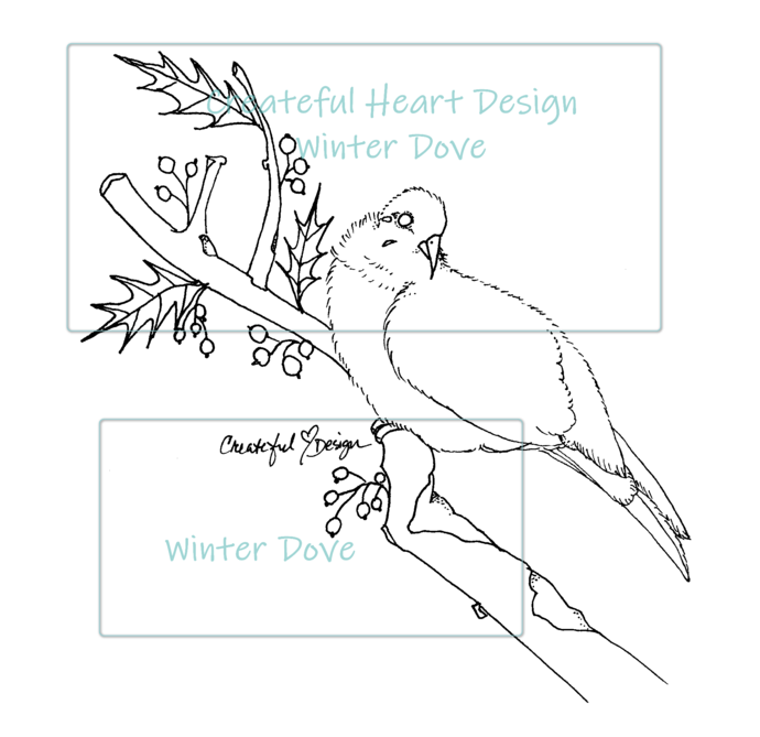 Winter Dove - digital image