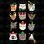 Cats, cat svg, cat lover, cat lover shirt, cat clipart, cat design, cat