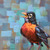 Cheery Robin Painting on an 8x8 inch deep Canvas ready for Display!