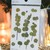 Appree Press Leaf Stickers - Eucalyptus, see-through backing PET stickers