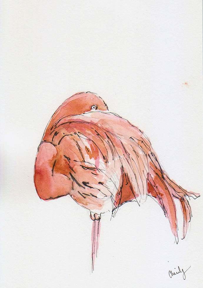 Pink Flamingo art - Original Watercolor - zoo painting - 5x7 watercolor - zoo