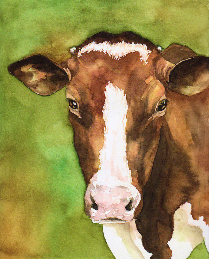ORIGINAL Watercolor brown and white cow painting zoo farm wall art