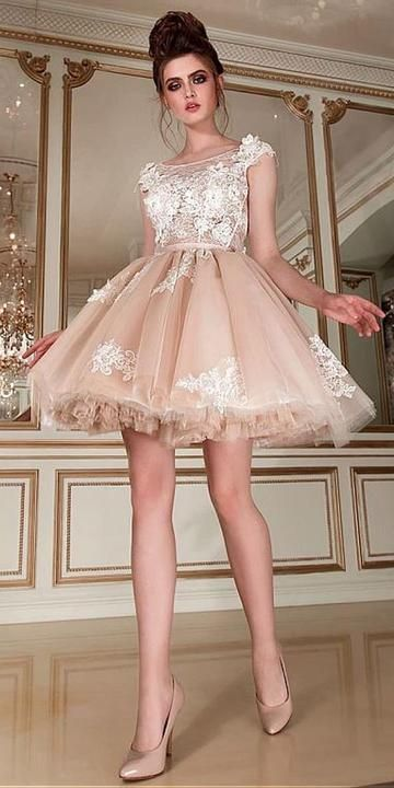 Romantic Tulle & Lace Scoop Neckline Short homecoming Dress With Lace Appliques