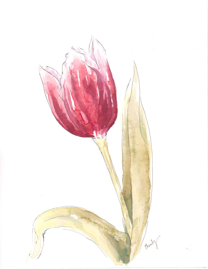 8x10 Tulip Art - Original Watercolor - Botanical Artwork - Ready to gift or