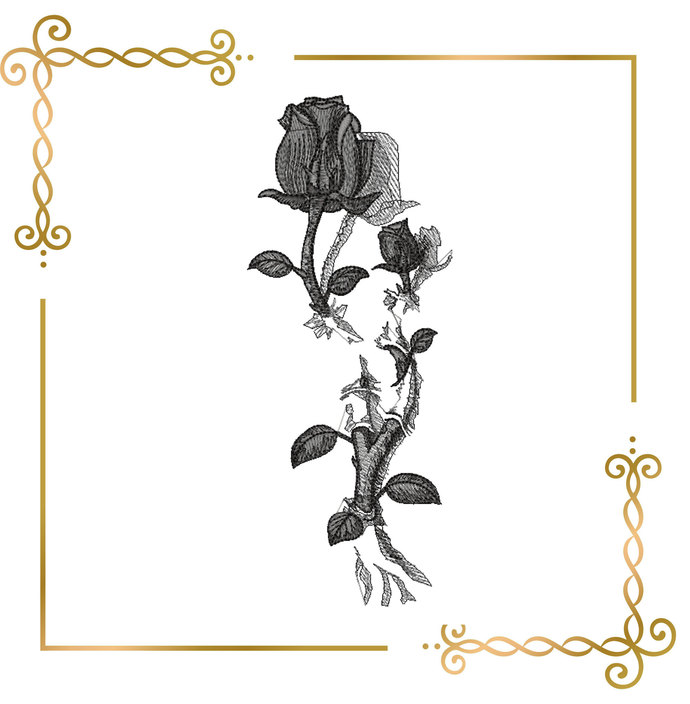 grey rose embroidery design to the direct download.