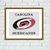 Carolina Hurricanes cross stitch pattern
