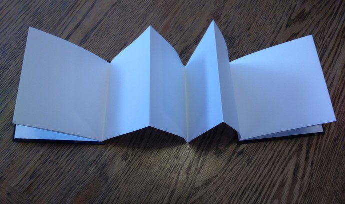 5 x 5 Accordion Book - 3D cover with pink/gold heart and red flowers. 10 Blank