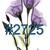 Waterslides X-Ray Flowers #2724 - #2729 Laser Printed