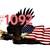Waterslides Eagles #1092 - #1098 Laser Printed