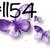 Waterslides Lavender #1153 - #1156 Laser Printed