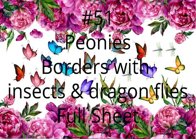 """Waterslides """"Peonie Boarders"""" Laser Printed"""