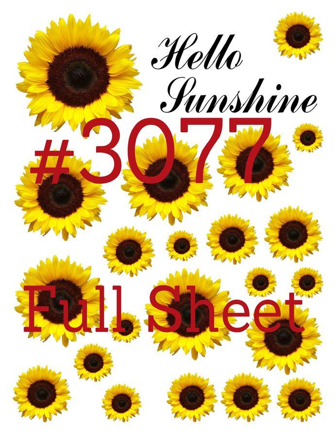 "Waterslides ""Hello Sunshine"" Laser Printed"