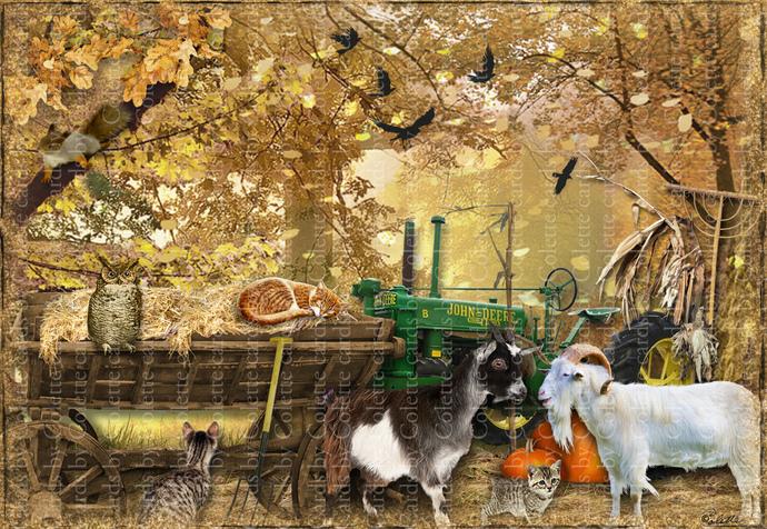 Autumn On The Farm Digital Collage Greeting Card331