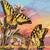 Tiger Swallowtail Cross Stitch Pattern***LOOK***X***INSTANT DOWNLOAD***