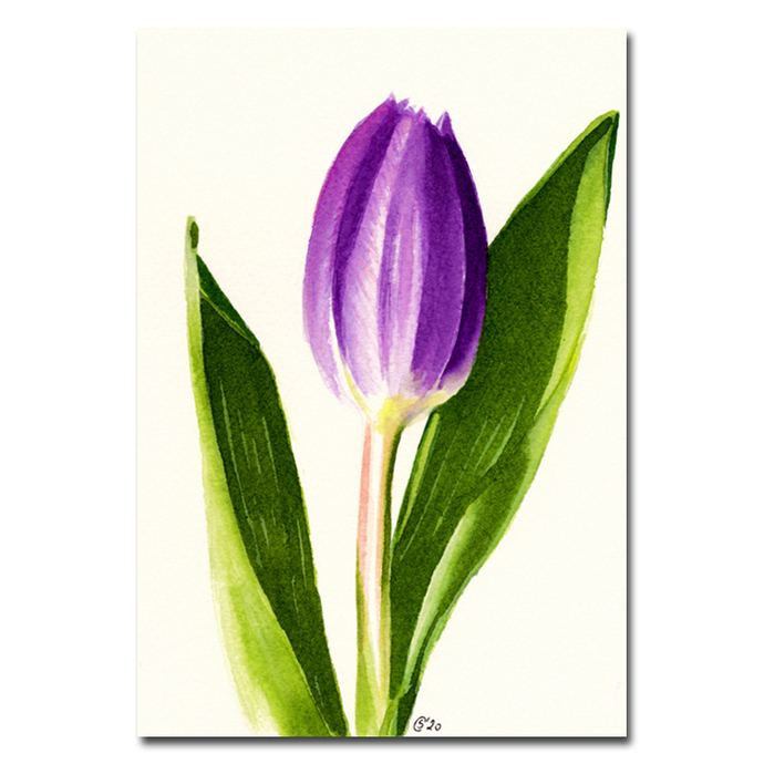 TULIP 2 purple spring flower watercolor markers painting Sandrine Curtiss