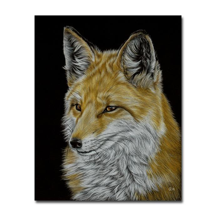 FOX 18 puppy dog Vixen pup pencils painting Sandrine Curtiss ORIGINAL Art 8x10