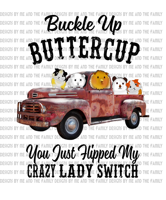 Buckle up butter cup you just hit my crazy lady hamsters switch, peace love