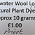 Teeswater Wool Locks For Felting & Embellishing - Natural Plant Dyed with Privet