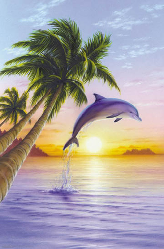 Beautiful Dolphin Cross Stitch Patterns***LOOK***X***INSTANT DOWNLOAD***