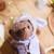 Traditionally handmade teddy bear in purple - Orwell - Gulnaz beautifully