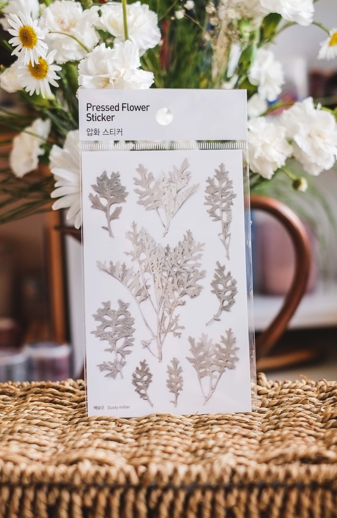 Appree Press Leaf Stickers - Dusty Miller, see-through backing PET stickers