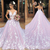 pink wedding dresses ball gown floral Lace Applique v neck elegant luxury