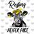 Resting Heifer Face Funny PNG