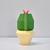 DIY Papercraft Cactus Planter,Cactus svg,cacti plants,Cacti gifts,cactus