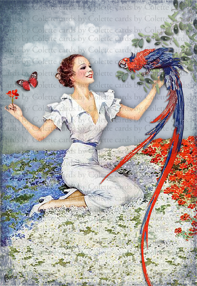 Lady and Red, White and Blue Parrot Digital Collage Greeting Card2752