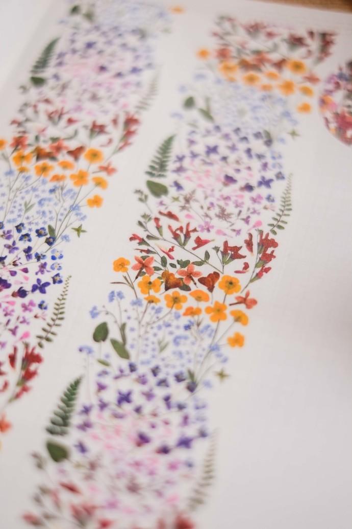 London Gifties original design - Pressed Flowers VI - 5cm wide Japanese washi