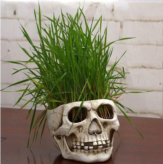 Status Skull Flower Planter-Planter Garden flower Storage Pots-Can be used as