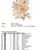 #590 Flower bouquet Modern Cross Stitch Pattern, flower counted cross stitch