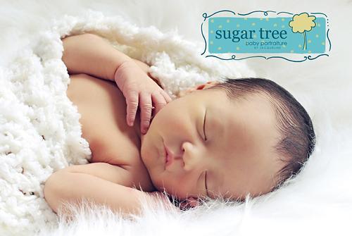 Newborn  Cocoon - Polor Snow