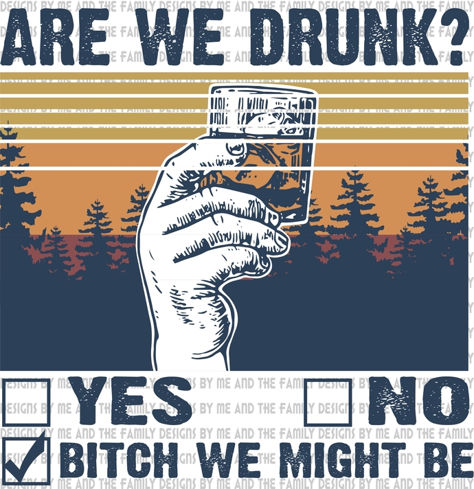 Are we drunk, yes or no, bitch we might be, adult humor, vintage, funny t-shirt,