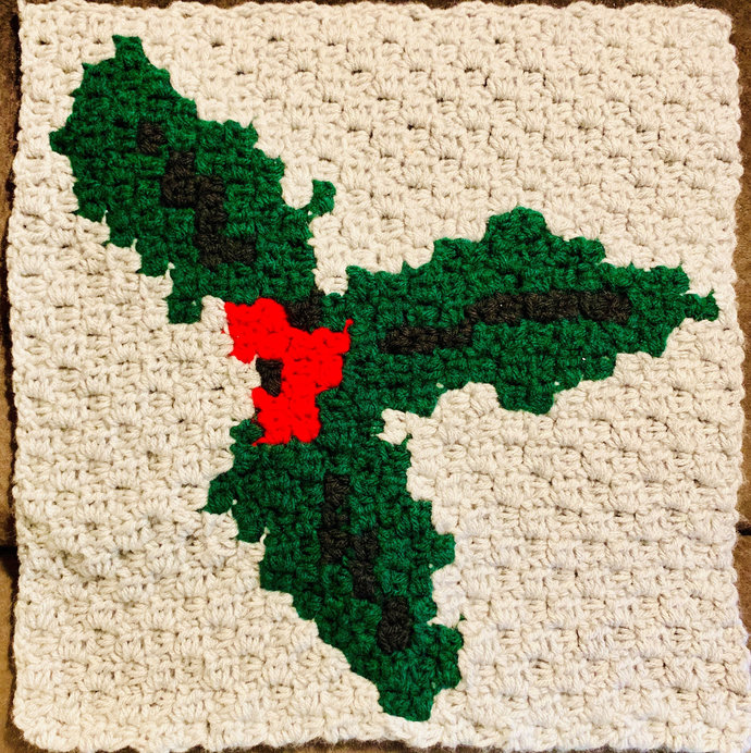Christmas Holly Berries Crochet Pattern Throw Pillow PDF Graph Row by Row