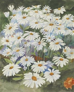 """Daisies"" Canvas Giclee Print Flower by Carol Thompson"