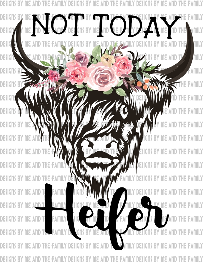 Not today heifer, buffalo, Cow, Peace love cow, peace love heifer, just chasing