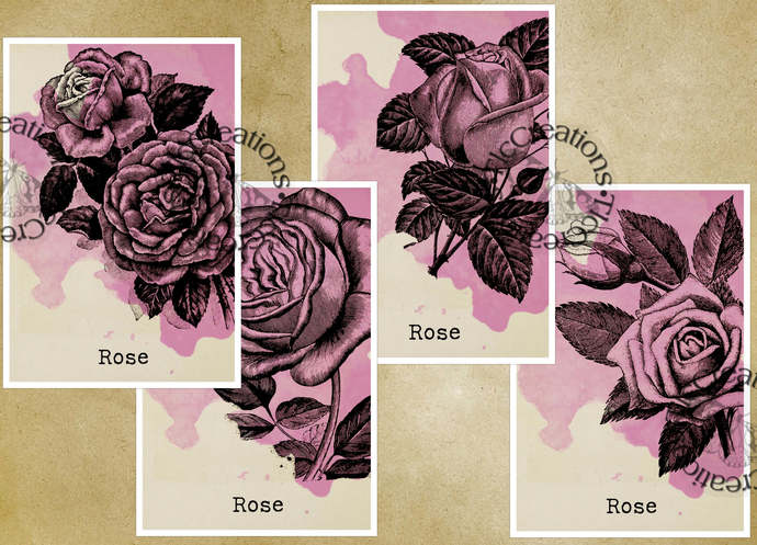 Plain and Simple Vintage Roses Journal Cards for your Junk Journals