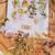 Pressed Flower Single Sticker bundle - Vintage - around 39 transprent stickers