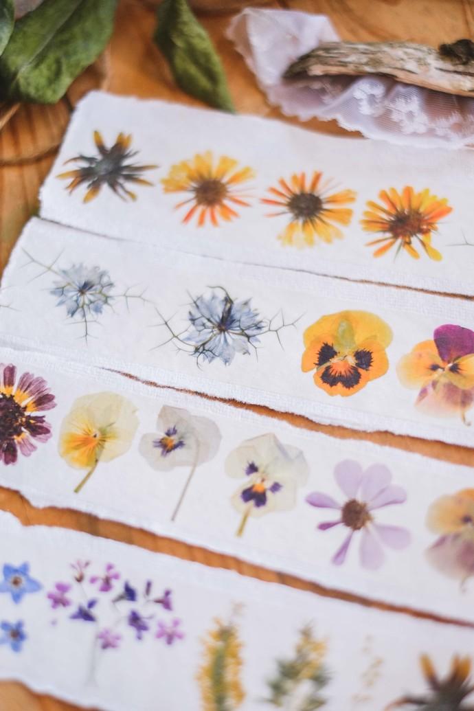 London Gifties original design - Pressed Flowers VIII - 4cm wide Japanese washi