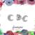 Crescent Moon Studs - Tiny Earrings - Dainty Studs - Diamond Earrings -