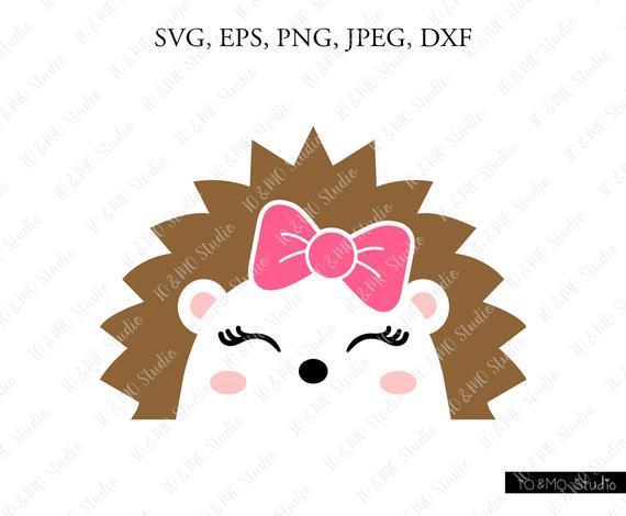Hedgehog Svg Cute Hedgehog Face Svg By Customizedsvg On Zibbet