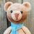 Bernard the Bear - PDF Download Only