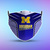 Michigan Wolverines Style 5 Face Mask, Adult Face Mask, Sport Face Mask,