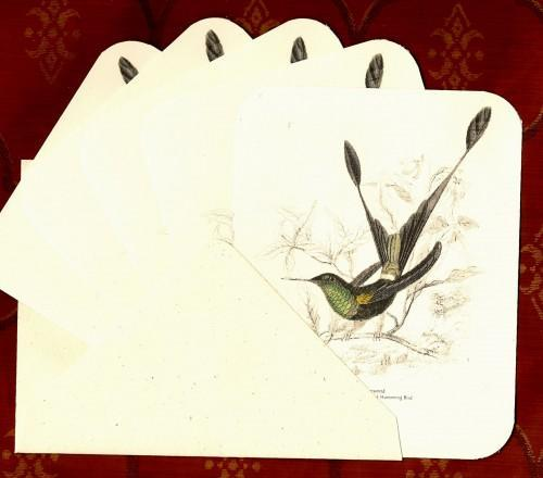 Hummingbird Victorian Natural History Stationery Note Flat Set
