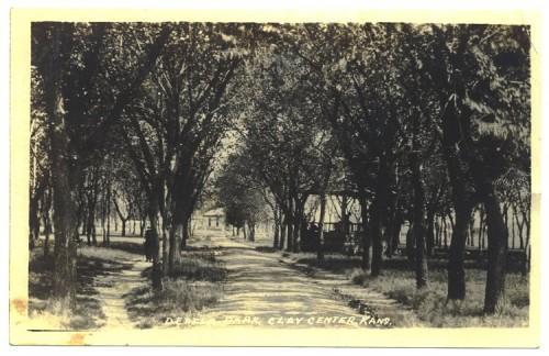 Clay Center Kansas Postcard Dexter Park Vintage 1910s RPPC Real Photo