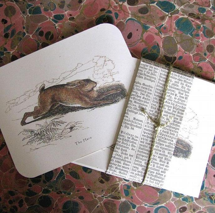 The Victorian Hare Natural History Stationery Note Flat Set