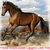American Quarter Horse Cross Stitch Pattern***LOOK******X***INSTANT DOWNLOAD***