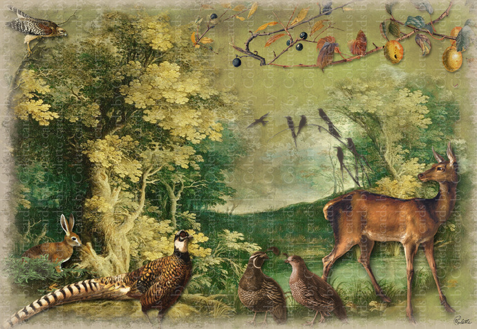 Forest Animals Digital Collage Greeting Card6080