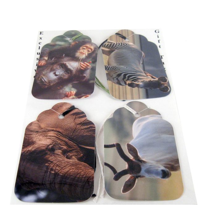 Animal Safari Gift Tag Set